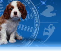 Pet_horoscope2